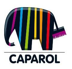 slide_caparol_25
